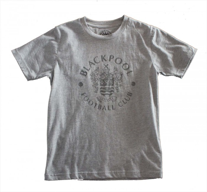 Junior T Shirt Grey Large Printed Crest
